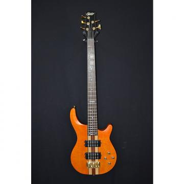 Custom Copley CBE59NT 5-String Bass - Jack Hall of Wet Willie