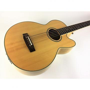 Custom Epiphone El Capitan 5st 1996 Gloss Natural