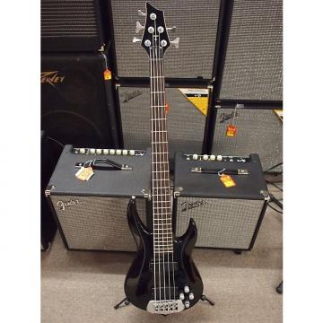 Custom TRABEN STANDARD 5 String Bass Guitar