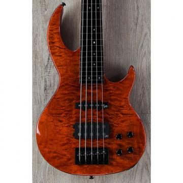 Custom ESP LTD BB-1005 Fretless 5-String Bass Autographed by Bunny Brunel, Burnt Orange, Aguilar