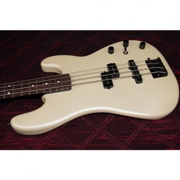 Custom Fender Fender Duff McKagan Signature Bass  Pewter