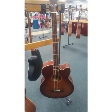 Custom Morgan Monroe Acoustic Bass 2015 Satin