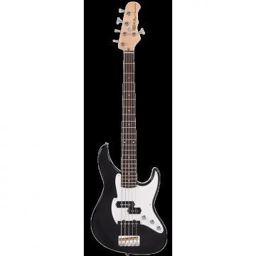 Custom Fret King Black Label Perception 5 String Bass Guitar - Gloss Black