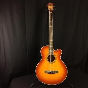 Custom Ibanez AEB20E - Manufacturer Refurbished