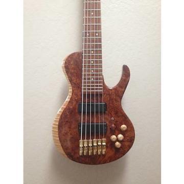 Custom John Marshall custom 6 string bass