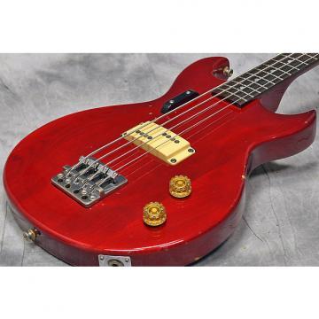 Custom Aria CSB-450