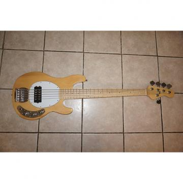 Custom 5 string bass guitar, New