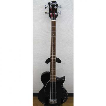 Custom Burny LSB series black
