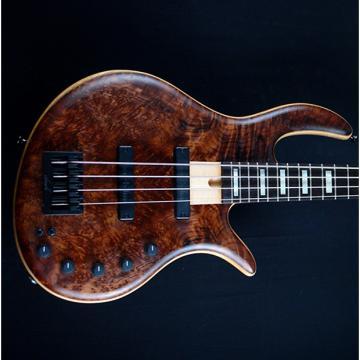 Custom Elrick Gold Series E-volution 2014 Burl Redwood