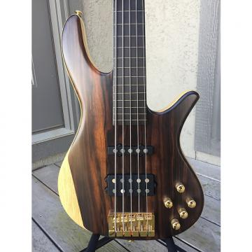 Custom Godlyke Deity Fretless 5 String Bass