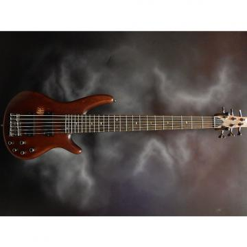 Custom Ibanez SR 496 6STR BASS