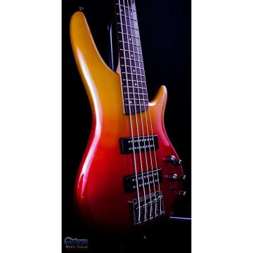 Custom Ibanez SR305E AFM 5 String Bass in Autumn Fade Metallic