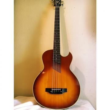 Custom Washburn AB-25 5 String Acoustic Electric Bass