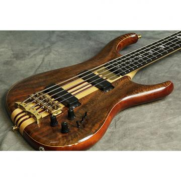 Custom Alembic The Europa 5 string
