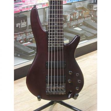 Custom Ibanez SR506 6-String Electric Bass