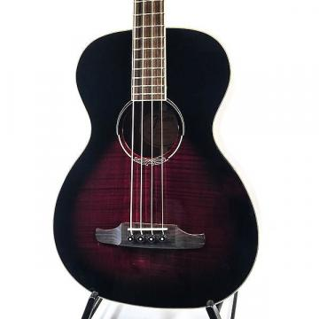 Custom Fender T-Bucket E Acoustic Bass