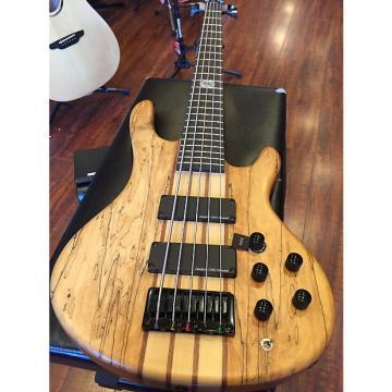 Custom Wolf 5 String Jazz Bass Spalted Maple Top Neck Through