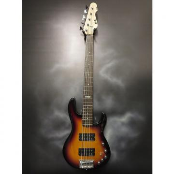 Custom ESP EII AP-5