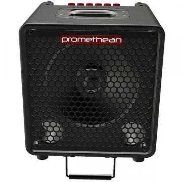 Custom Ibanez P3110 Promethian Combo Bass Amplifier