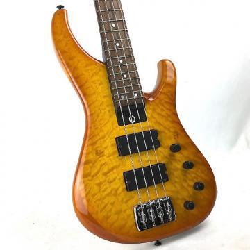 Custom G. Gould GGi4 Bass - 2016 Caramelburst