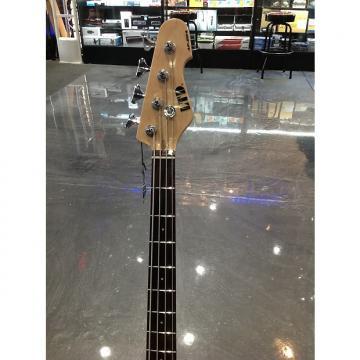 Custom ESP LTD AP204 Bass Burgandy Burst