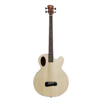 Custom Spector Timbre Series Acoustic Electric Bass Guitar Natural