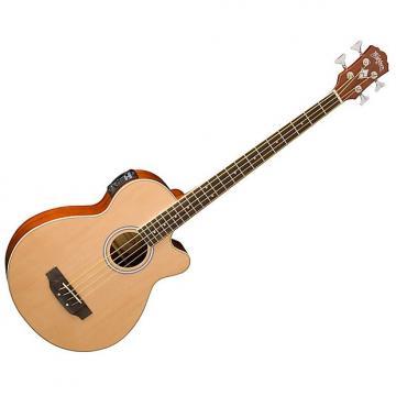 Custom Washburn AB5K Acoustic Electric Bass w/ Cutaway