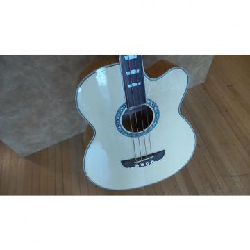 Custom DreamBow DJBF-405SCE 4 String Acoustic/Electric Bass W/HSC