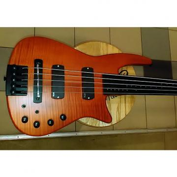 Custom NOS NS (Steinberger) 5-string headless fretless bass. Made in Czech Republic. Not Chinese WAV Series