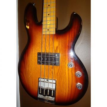 Custom 1983 Peavey T-45 Bass