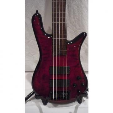 Custom Spector Euro 5LX Custom 5 String Fretless Bass 2013 Black Cherry Burst