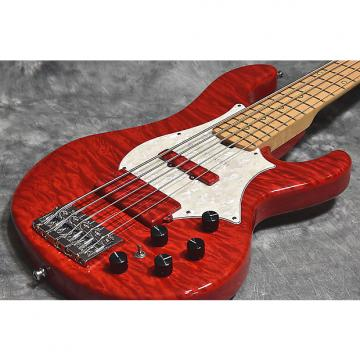 Custom ESP 20th L'Anniversary Bardic See Thru Red