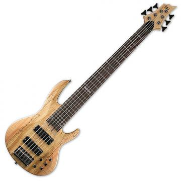 Custom ESP LTD B-206SM Bass in Natural Stain B-Stock