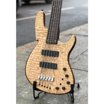 Custom Wood & Tronics Chronos Fretless 5 String