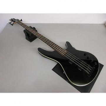 Custom Ibanez SRX2EX1 Bass Guitar