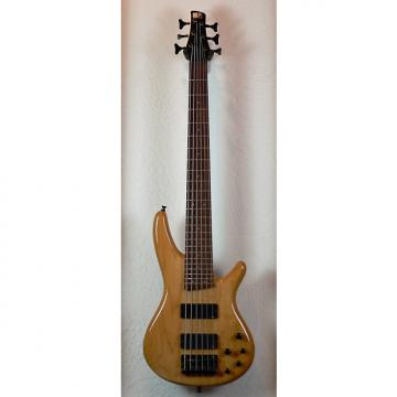 Custom Ibanez SR 406 1998 6-String Bass