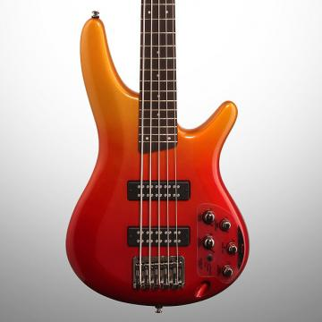 Custom Ibanez SR305E Electric Bass, 5-String, Autumn Fade Metallic