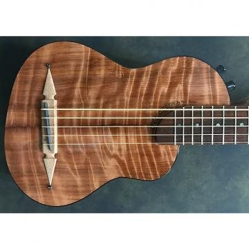 Custom Rick Turner RB-5 Renaissance Fretted 5 String Bass 2016 Flame Redwood Top
