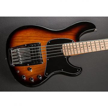 Custom Ibanez ATK-305 Bass 2006 Sunburst