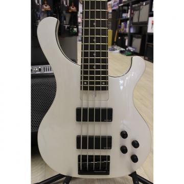 Custom Cort T55 5 String Active Bass with EMG HZ Pickups