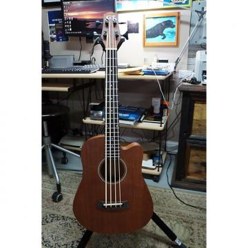 Custom Gold Tone M-Bass 23-Inch Scale Acoustic Electric MicroBass