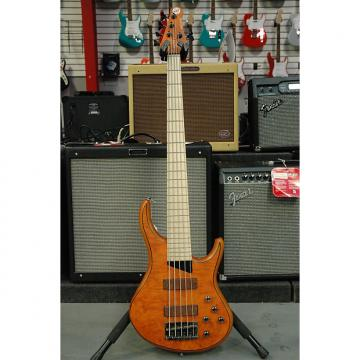 Custom MTD Kingston Z 5-String Bass
