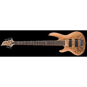Custom ESP LTD B-205SM Left Handed Electric Bass in Natural Satin