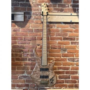 Custom F. Brock Custom 5 String Electric Bass Guitar