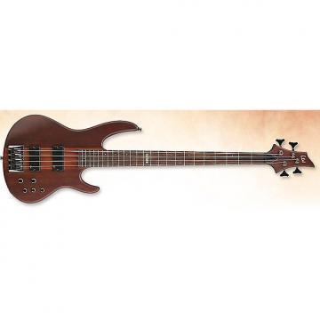Custom ESP LTD D-4 Bass in Natural Stain