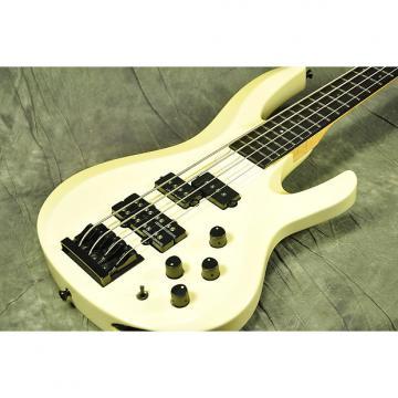 Custom ESP BTL-240 White