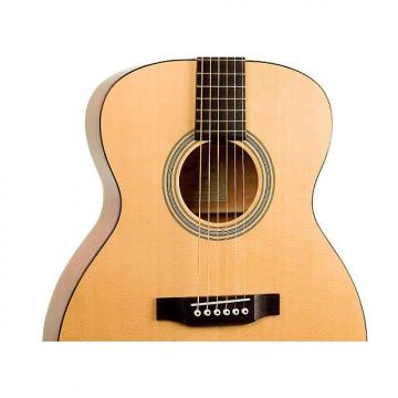 Custom Recording King RO-06  000-style acoustic guitar
