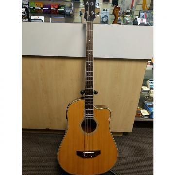 Custom Epiphone El Segundo Acoustic Bass
