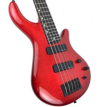 Custom D. Gatewood 5-String Bass Cherry Red
