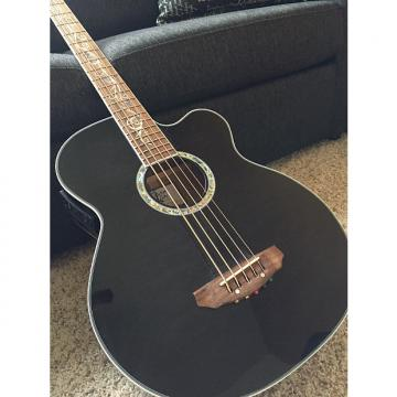 Custom Michael Kelly Acoustic/Electric Dragonfly Bass 2012 Smoke Burst
